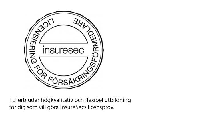 InsureSec logo